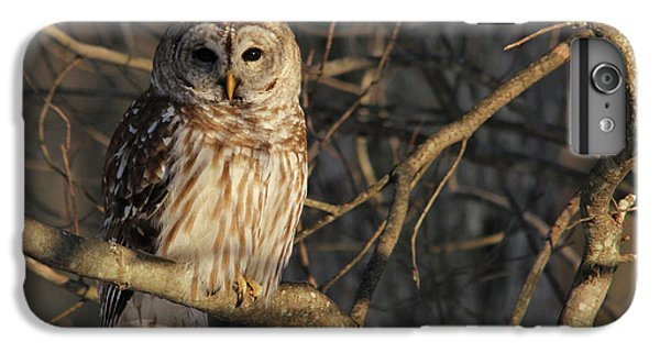 Waiting For Supper IPhone 6 Plus Case