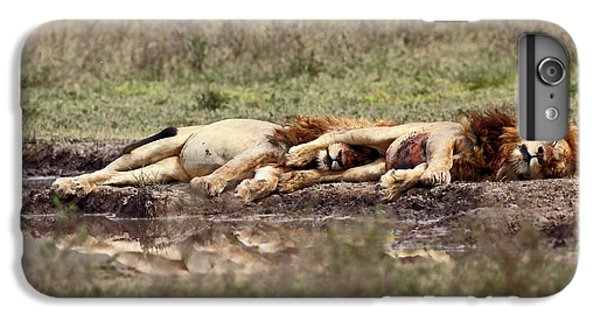 Lion iPhone 6 Plus Case - Warriors At Rest by Arik Kaneh