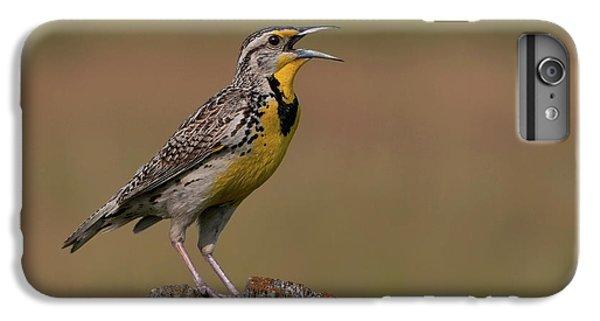 Western Meadowlark.. IPhone 6 Plus Case by Nina Stavlund