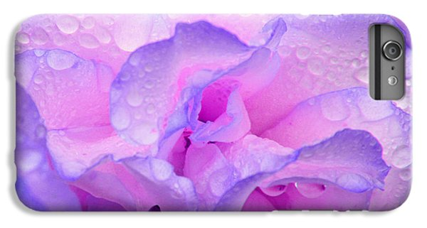 IPhone 6 Plus Case featuring the photograph Wet Rose In Pink And Violet by Nareeta Martin