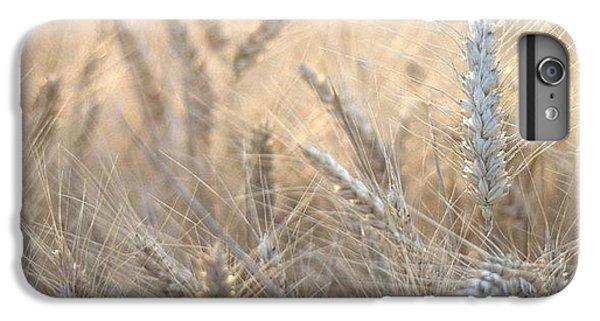 Beautiful iPhone 6 Plus Case - #wheat #france #rsa_ladies #rsa_nature by Georgia Fowler