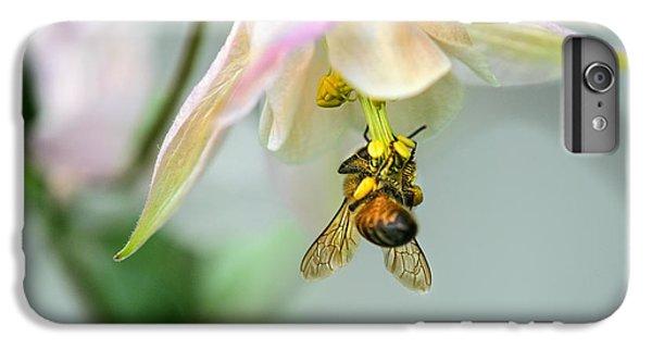 Honeybee iPhone 6 Plus Case - Wheeeee by Susan Capuano