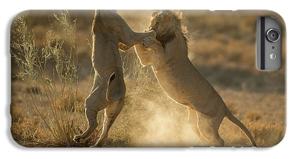 Lion iPhone 6 Plus Case - Where Dust Will Fly by Jaco Marx