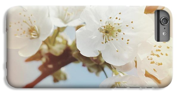 Orange iPhone 6 Plus Case - White Apple Blossom In Spring by Matthias Hauser