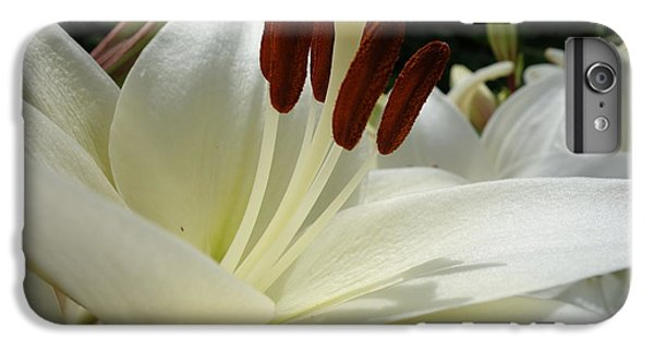 White Asiatic Lily IPhone 6 Plus Case
