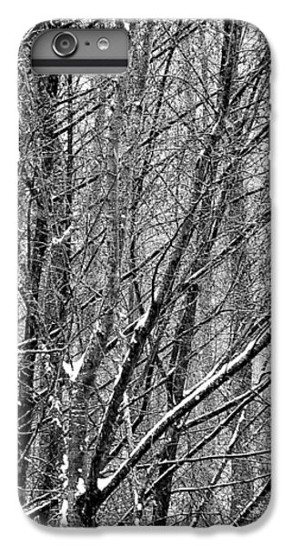White Forest IPhone 6 Plus Case