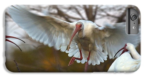 White Ibis IPhone 6 Plus Case by Mark Newman