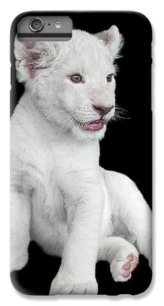 Lion iPhone 6 Plus Case - White Lion Cub by David Williams
