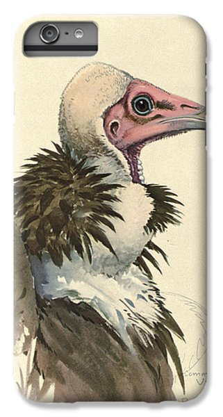 White Necked Vulture IPhone 6 Plus Case