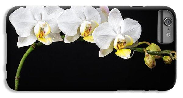 White Orchids IPhone 6 Plus Case by Adam Romanowicz