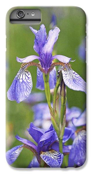 Wild Irises IPhone 6 Plus Case