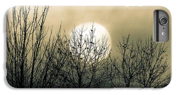 Winter Into Spring IPhone 6 Plus Case