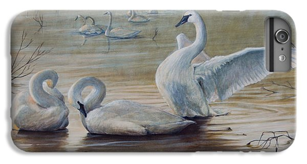 Wintering Trumpeters IPhone 6 Plus Case by Rob Dreyer