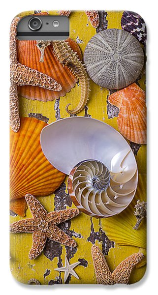 Wonderful Sea Life IPhone 6 Plus Case by Garry Gay
