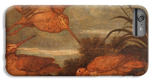Woodcock At Dusk, Francis Barlow, 1626-1702 IPhone 6 Plus Case by Litz Collection