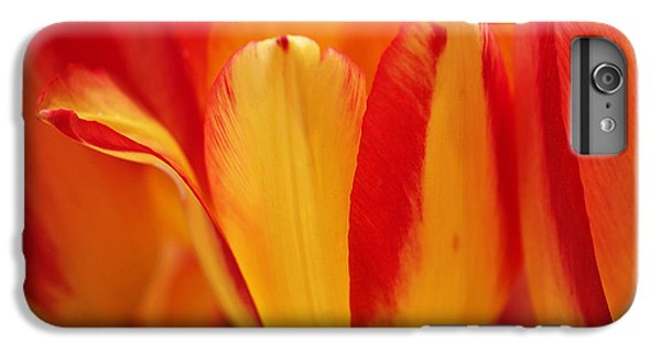 Yellow And Red Striped Tulips IPhone 6 Plus Case by Rona Black