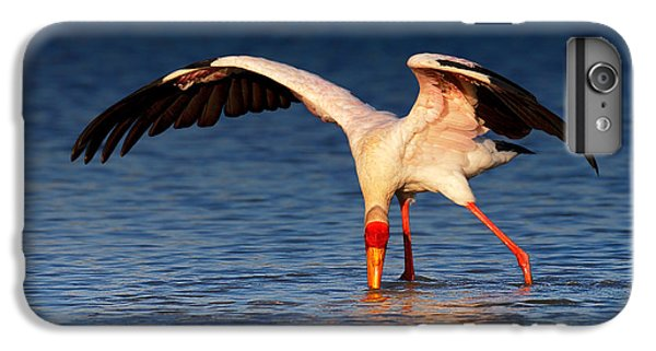 Yellow-billed Stork Hunting For Food IPhone 6 Plus Case by Johan Swanepoel