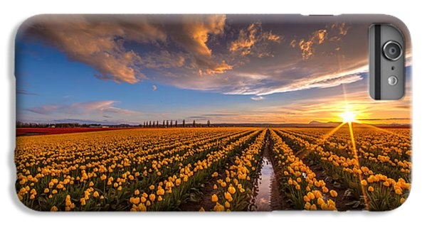 Yellow Fields And Sunset Skies IPhone 6 Plus Case