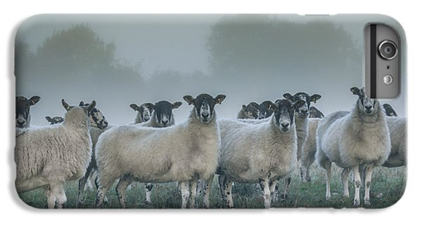 You And Ewes Army? IPhone 6 Plus Case by Chris Fletcher