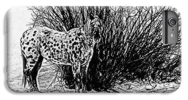 IPhone 6 Plus Case featuring the photograph You Can't See Me by Karen Shackles