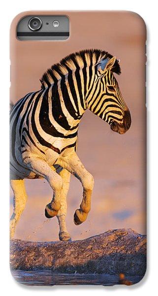 Zebras Jump From Waterhole IPhone 6 Plus Case by Johan Swanepoel