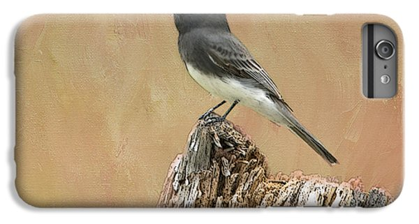 Black Phoebe IPhone 6 Plus Case by Betty LaRue