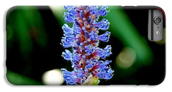 Beautiful iPhone 6 Plus Case - Glowing Pond Beauty by James Granberry