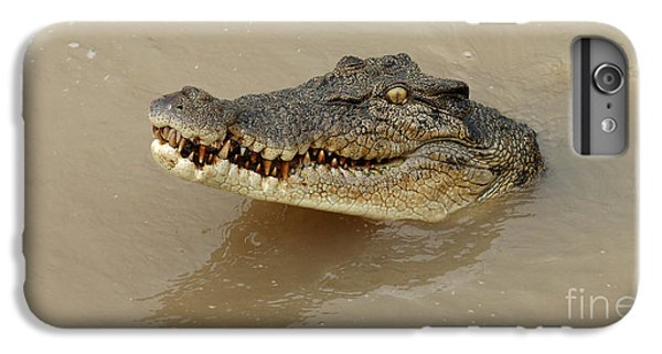 Salt Water Crocodile 3 IPhone 6 Plus Case by Bob Christopher