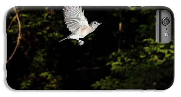Tufted Titmouse In Flight IPhone 6 Plus Case by Ted Kinsman