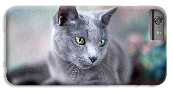 Cats iPhone 6 Plus Case - Russian Blue by Nailia Schwarz