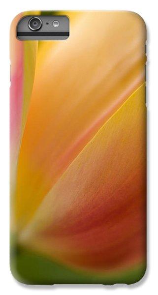 Tulip iPhone 6 Plus Case - April Grace by Mike Reid