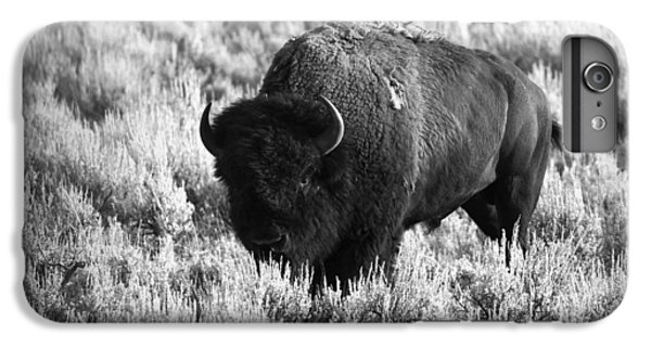 Bison In Black And White IPhone 6 Plus Case by Sebastian Musial