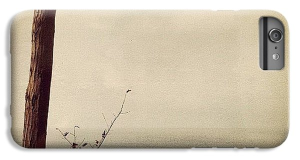Orange iPhone 6 Plus Case - Calm Waters by Michelle Calkins
