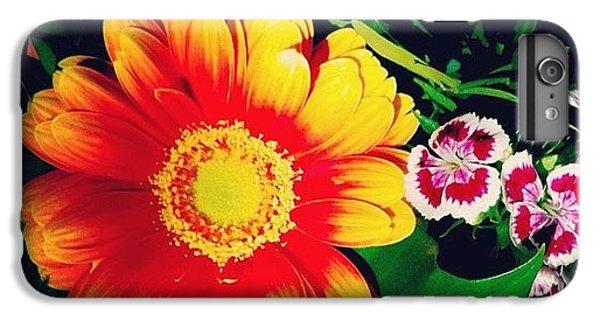 Orange iPhone 6 Plus Case - Colorful Flowers by Matthias Hauser