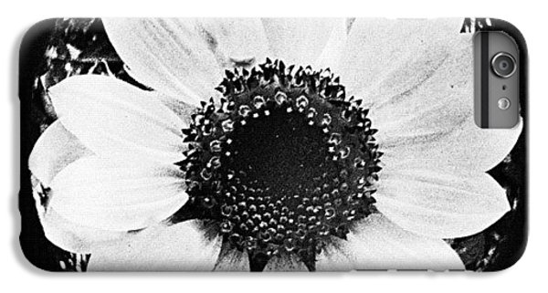 Detail iPhone 6 Plus Case - Daisy by Mari Posa