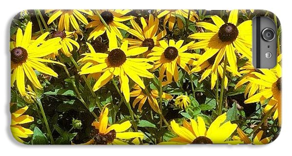Bright iPhone 6 Plus Case - Flowers by Lea Ward