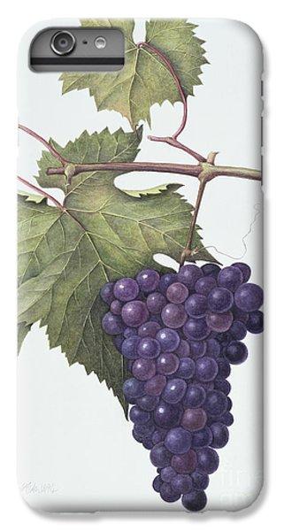 Grapes  IPhone 6 Plus Case by Margaret Ann Eden