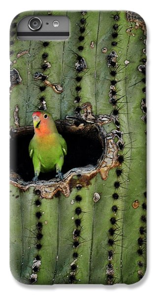 Home Sweet Home  IPhone 6 Plus Case by Saija  Lehtonen