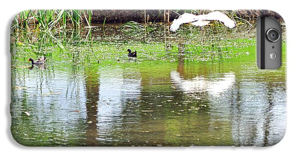 Ibis Over His Reflection IPhone 6 Plus Case by Kaye Menner