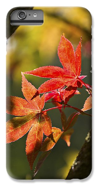 IPhone 6 Plus Case featuring the photograph In Between... by Clare Bambers