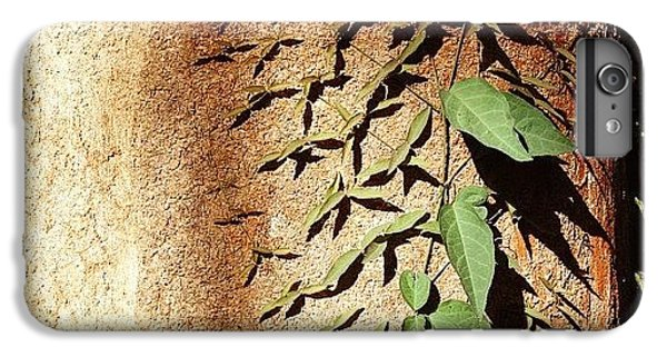 Ivy IPhone 6 Plus Case