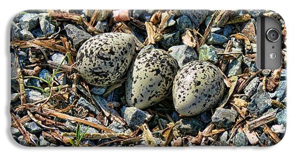 Killdeer Bird Eggs IPhone 6 Plus Case by Jennie Marie Schell