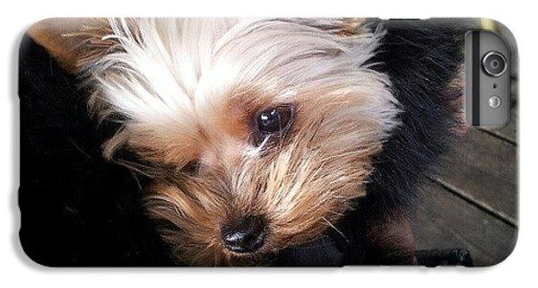 My #princess #dog #yorkie IPhone 6 Plus Case