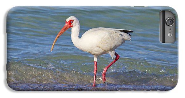 Ibis iPhone 6 Plus Case - One Step At A Time by Betsy Knapp