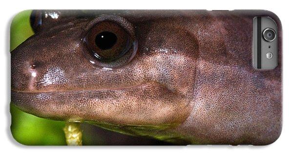 Red Hills Salamander IPhone 6 Plus Case by Dant� Fenolio