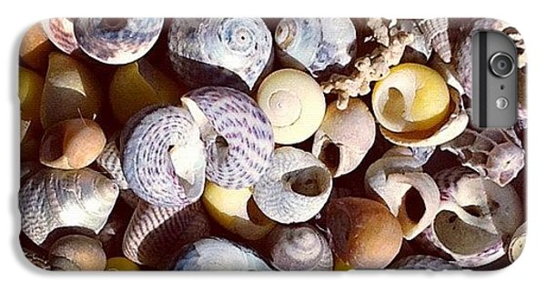 Shells From Brittany IPhone 6 Plus Case
