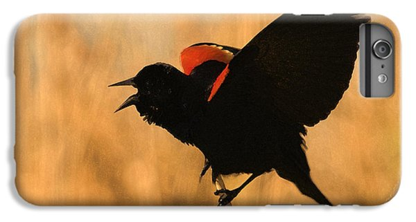 Singing At Sunset IPhone 6 Plus Case by Betty LaRue