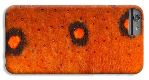 Skin Of Eastern Newt IPhone 6 Plus Case by Ted Kinsman
