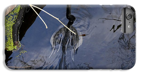 Swimming Bird IPhone 6 Plus Case by David Lee Thompson
