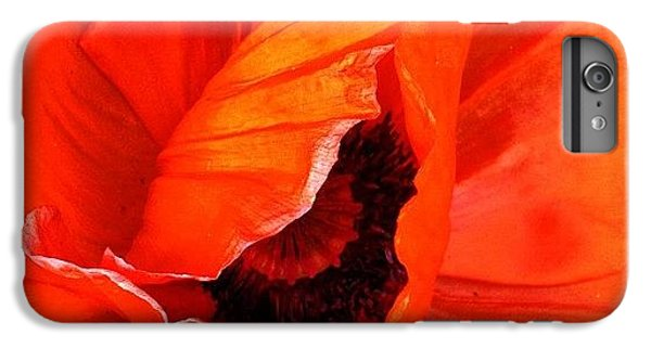 The Beautiful Icelandic Poppy IPhone 6 Plus Case